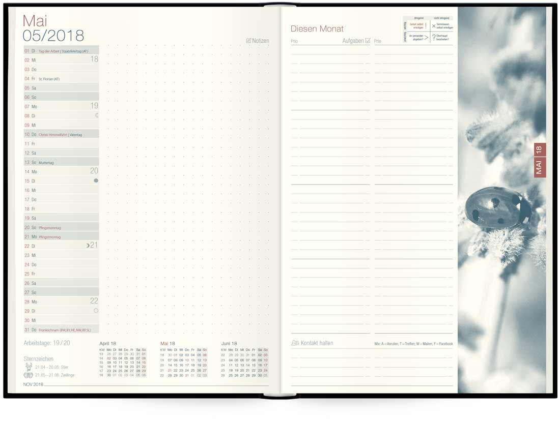 Tageskalender »Organizer Day by Day« für 2018 - Häfft Verlag